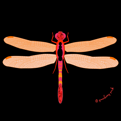 Dragonfly design on black background by Gooseberry Pink