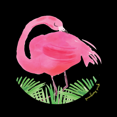 Flamingo design on black background by Gooseberry Pink