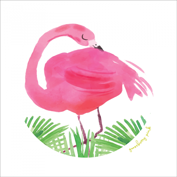 Flamingo design on white background by Gooseberry Pink