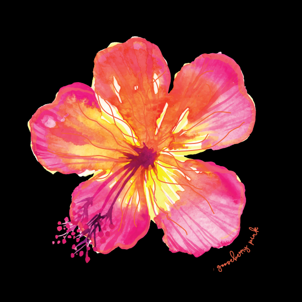 Tropical flower design on black background by Gooseberry Pink