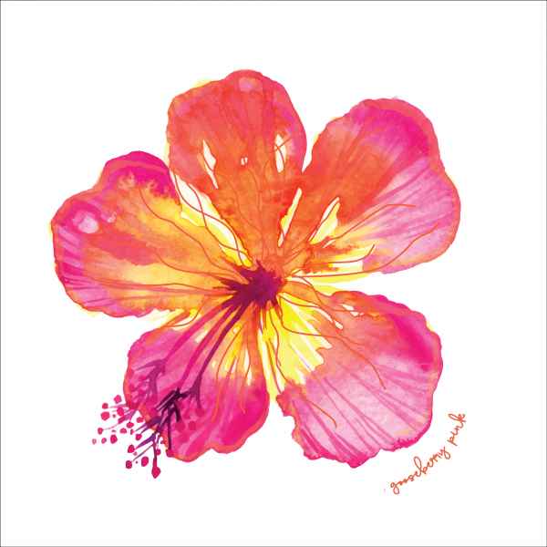 Tropical flower design on white background by Gooseberry Pink