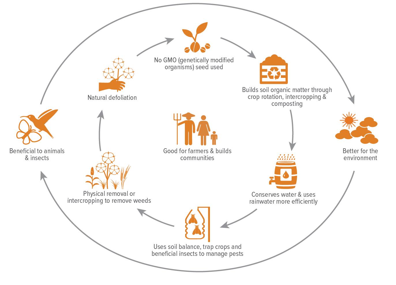 Diagram showing benefits of organic cotton